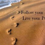 Can Following Your Passion Backfire and Make Your Life Worse?